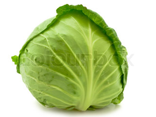 Photo of the single green cabbage against the white background