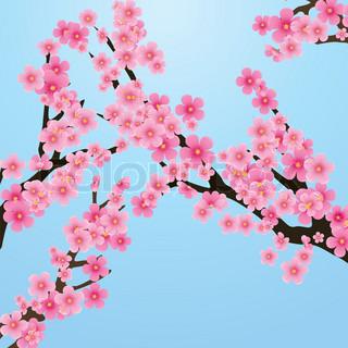 Kirschblüte , Blumen von sakura -, Baum- Brunch , blauer Himmel, Frühling Hintergrund , Vektor-Illustration