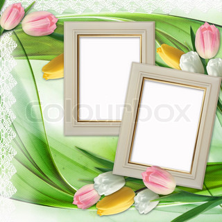 Three picture frames and tulips flowers