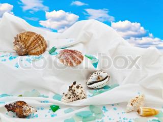 marine Dekor mit Muscheln und dekorativen Steinen gegen den blauen Himmel
