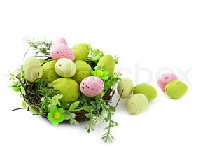 decorative easter nest with egg and spring plants isolated on white background