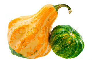 yellow and green decorative squashes isolated on white background