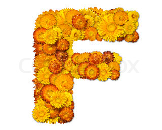 Letters from alphabet from yellow and orange flowers. Isolated on white background. With clipping path