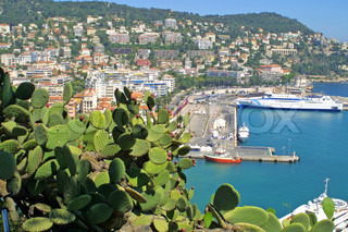 Panorama of french city Nice with cactuses and yachts