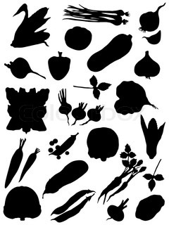 Collection of silhouettes of vegetables