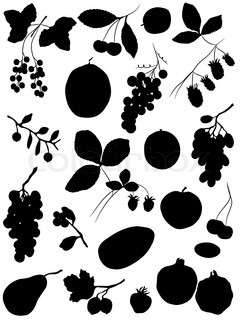 Collection of silhouettes fruits and berrie