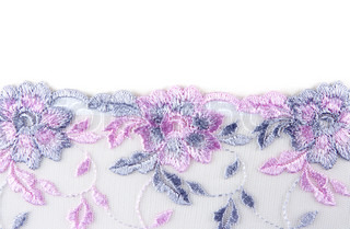Blue lace with rose pattern insulated on white background