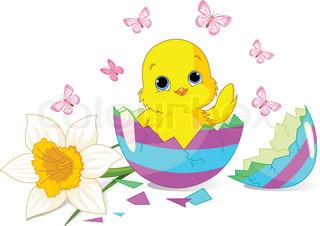 Påske kylling sidder i den ødelagte Easter Egg .