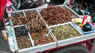 food in Bangkok from insects and worm and cockroach