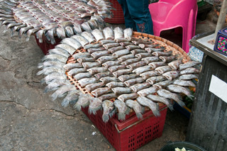selection fish on fish market in Asian city Bangkok