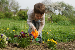 Boy carefully watered flowers on the lawn