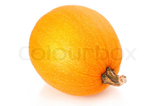 Ripe pumpkin vegetable isolated on white background