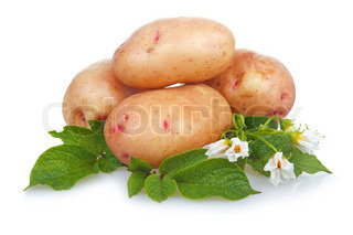Heap of ripe potatoes vegetable with green leafs isolated on white background