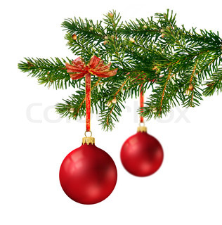 Two satin red glass balls hanging on green Christmas tree branch