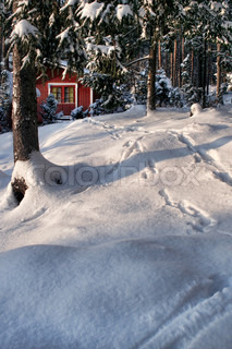 Wooden Christmas red hut deep in snow covered winter forest
