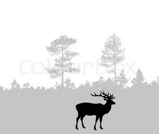silhuet af hjorte
