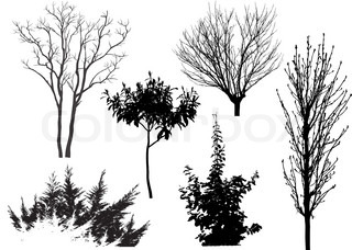 Variants of the trees