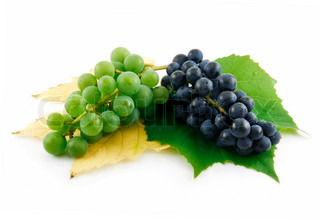Bunch of Ripe Green and Blue Grapes with Leaf Isolated on White Background