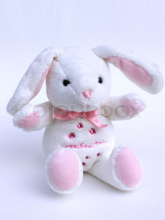 stuffed bunny on a white background