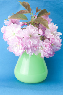 sakura flower in a vase and a card signed thank you on a blue background