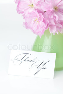 sakura flower in a vase and a card signed thank you isolated on white