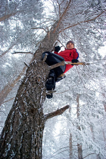 Man on tree in winter forest