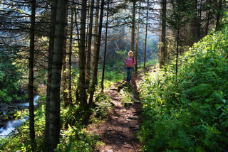 Woman on trail in pine summer woods