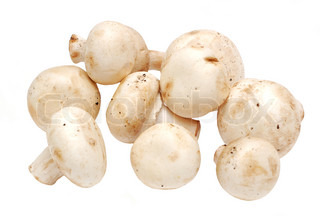 Fresh raw mushroom (champignon) on white background