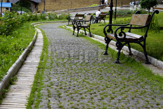 Benches along a path in summer day in park