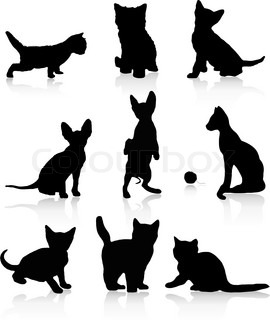 Kittens and cats vector illustration isolated over white