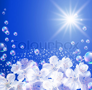 Sky, white flowers, clouds, bubbles  and  sunshine