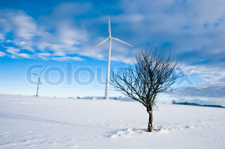 Two wind turbines and a tree in winter landscape