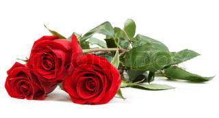 Tre røde roser isoleret på hvid baggrund