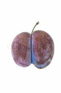 Plum twins isolated on white background