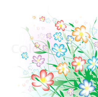 Bright multicolored summer flower bouquet with copyspace for your text