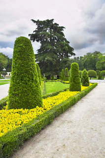 Avenue in magnificent park Buen-Retiro in Madrid