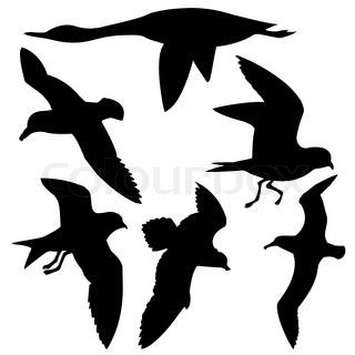 vektor silhuet flyvende fugle på hvid baggrund