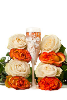 One glass of champagne and a roses against white background.