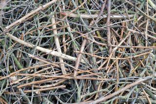 Background from set of thin dry branches of the twigs prepared for kindling of a fire