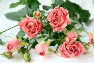 bouquet of pink mini roses Sprays