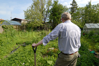 Man leaning on a spade and looking round the overgrown garden