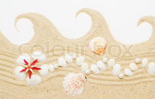 sand and sea shells isolated . Beach sand with sea shell and star fish postcard