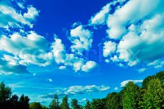 Green forest with blue sky and clouds on summer day
