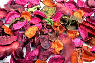Background from multi-coloured dry leaves