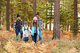 Family Hiking Through Forest California USA