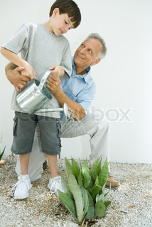 ©Laurence Mouton/AltoPress/Maxppp ; Boy watering outdoor plant with grandfather, both smiling
