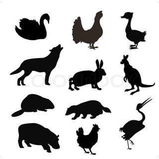 Black silhouettes of the beasts and birds on white background