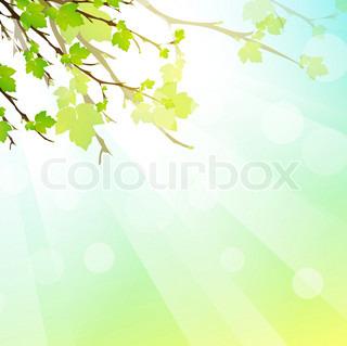 grøn frisk solrig baggrund med grene