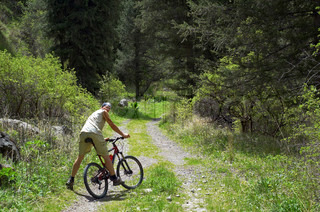 Mountain biker on old rural road in spring forest