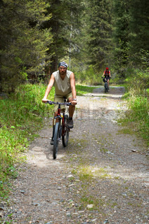 Mountain bikers on old rural road in spring forest